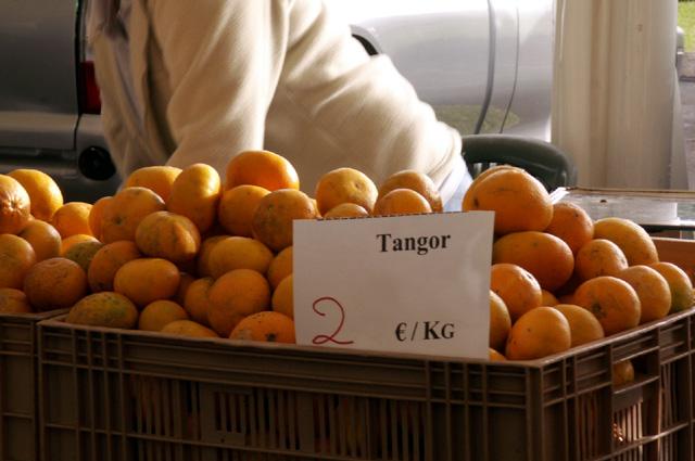 tangor_01
